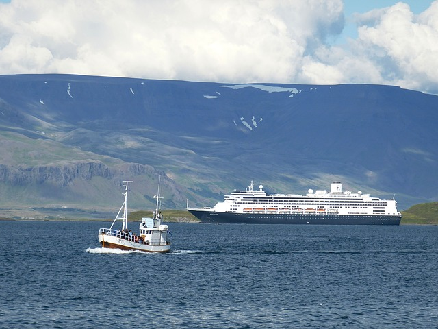 Get on a boat in Reykjavík to go fishing or whale watching