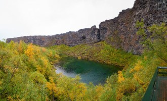 Ásbyrgi canyon in Iceland